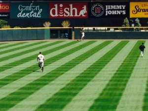 Hunter warms up at Coors field with trees just waiting for another Homer to reach them.