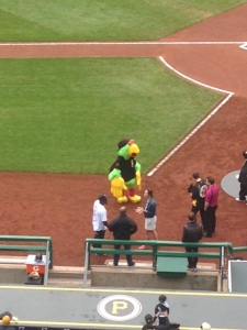 The Pirate Parrot a friendly mascot